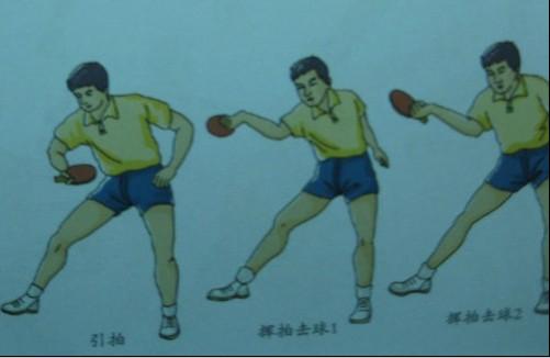 乒乓球教学视频的技术图解