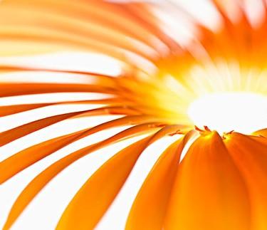 不要使用日光浴床和太阳灯,它们也会带来过量的紫外线照射.